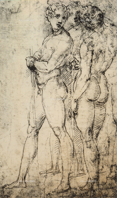Study of two male nudes, standing, Raphael, British Museum, London
