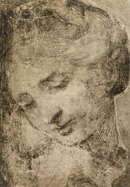 Woman's head, School of Raphael, British Museum, London