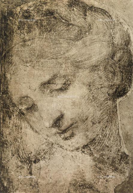 Woman's head, School of Raphael, British Museum, London