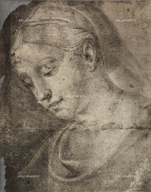 Feminine head, School of Raphael, British Museum, London