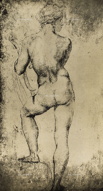 The god Apollo seen from the rear; drawing by Raphael. Graphische Sammlung, Albertina, Vienna