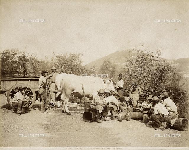 Firenze (environs). Peasants during a break