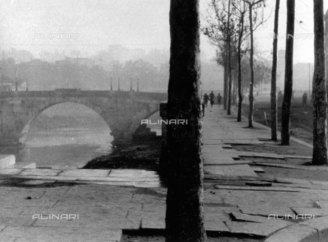 A stretch of the Lungo Tevere in Rome, with slender trees. In the background, a stone bridge