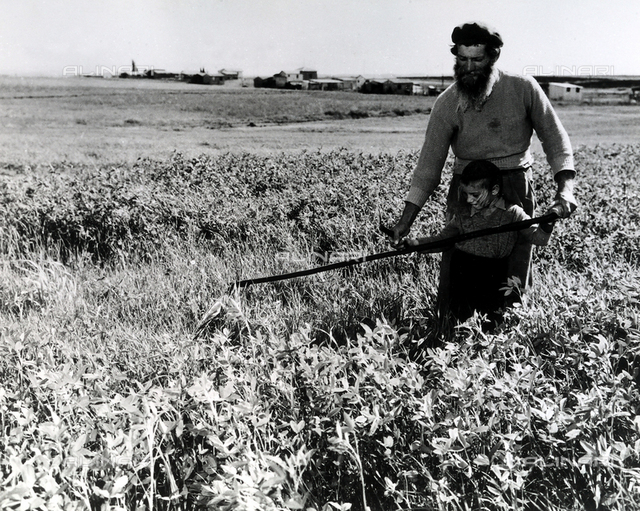 A farmer teaching his daughter how to use scythe in a field.