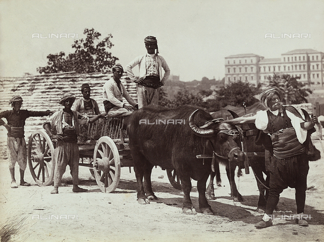 Some Turkish men photographed with a cart pulled by two buffalos