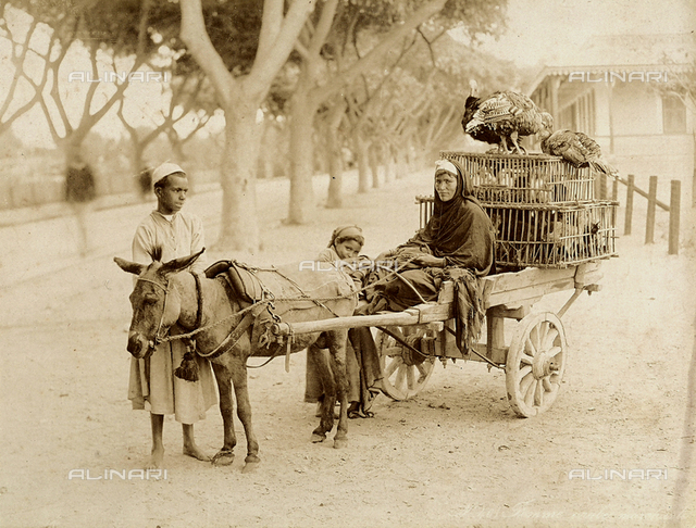 Egyptian game merchants with a cart and donkey