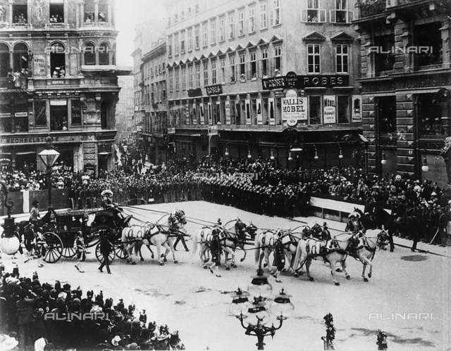 Horses pulling the carriage of Franz Joseph, near Saint Stephen's Church in Vienna