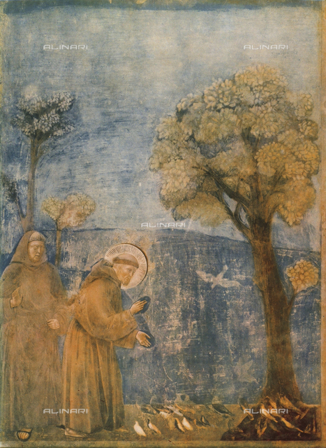 Saint Francis preaching to the birds, Upper Church, Basilica of San Francesco, Assisi