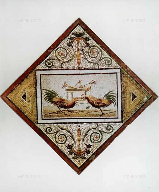 Cock fight; mosaic from Pompeii, National Archaeological Museum, Naples