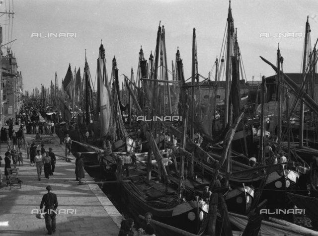 View of the port of Chioggia