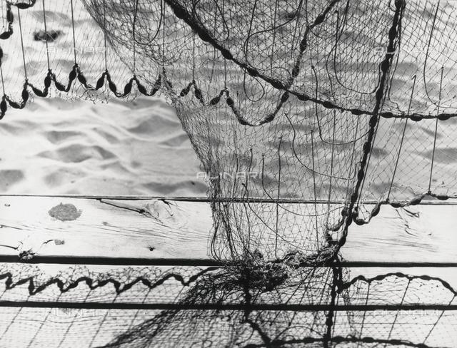 """Fish nets"""