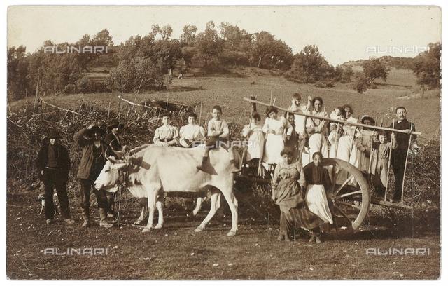 Tour members posing on a farm cart