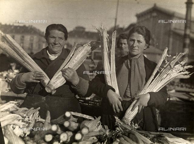 Farmers peddling cardoon in Turin