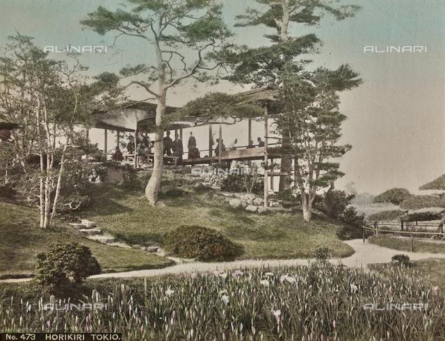 Horikiri Garden in Tokyo