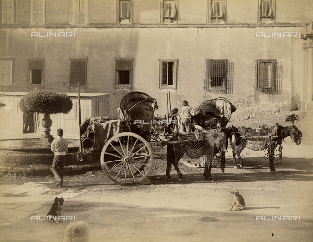Sicilian cart to transport goods and people