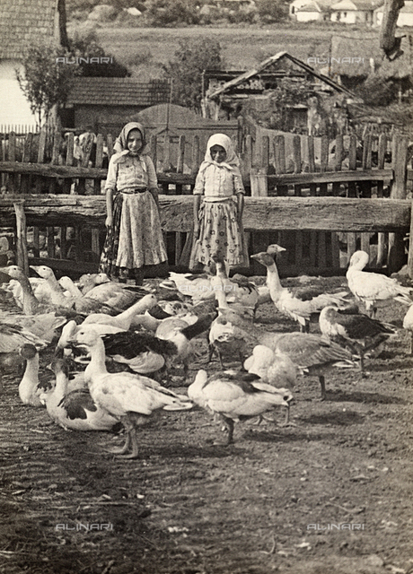 Young Hungarian girls with a number of geese
