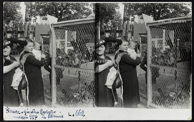 Trip to the zoo in Florence; Stereoscopic photography on postcard