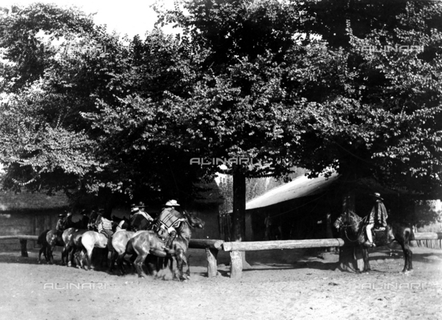 Horse breeders on a farm in Chile