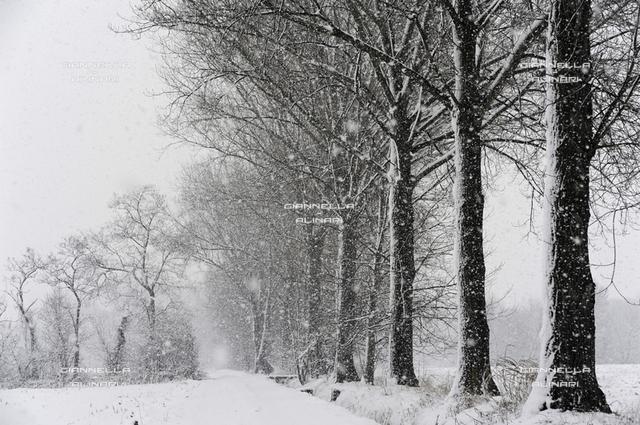 Nevicata Pianura Padana