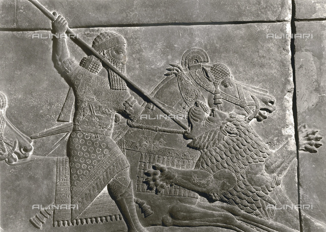 Stone relief from the palace of Ashurbanipal, Nineveh, Iraq, Assyrian, 668-627 BC. Detail from the hunt of lions with the King mounted. From the British Museum, London