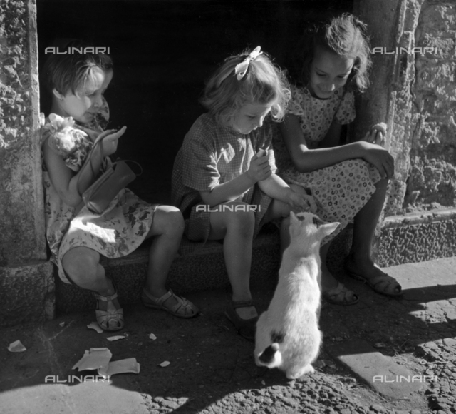 """St. Barnaba, Venice, The Kitten"" Three young girls sitting on a step, play with a friendly kitten"