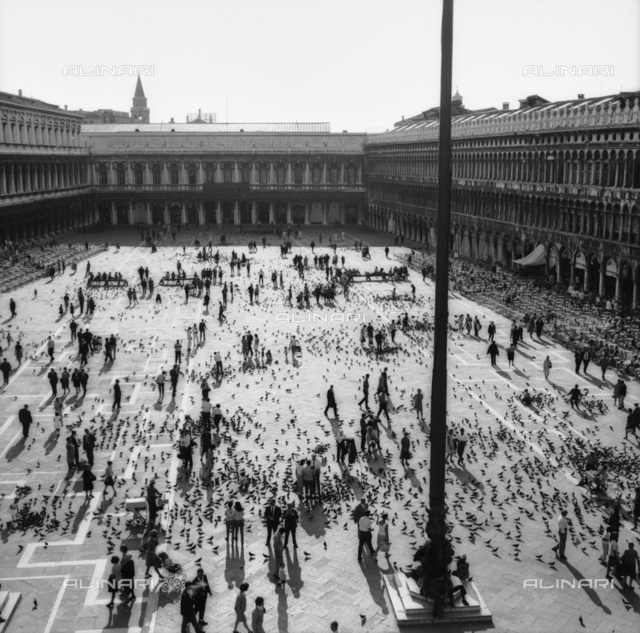 Aerial View of Piazza San Marco in Venice