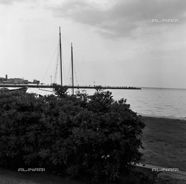 Audace Pier in Trieste