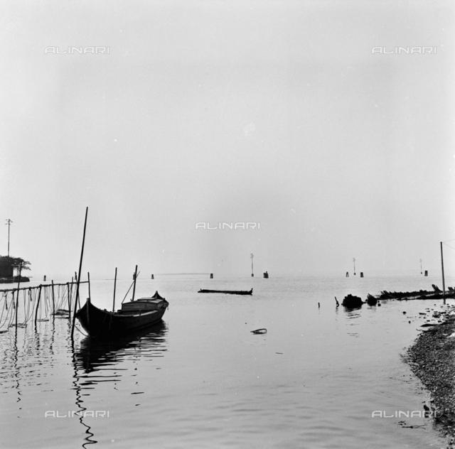 Lagoon landscape