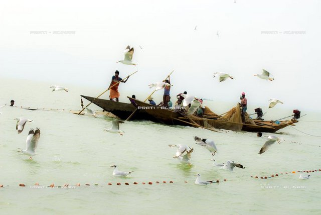 India, Orissa, Chilika lake, fishermen