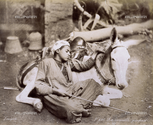 Arab boy asleep along a road. The boy is resting against a small donkey lying at his side