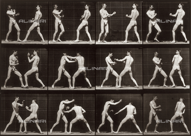 """Animal Locomotion"" (plate 338): sequence with two half naked men fighting"