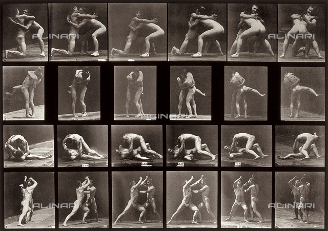 """Animal Locomotion"" (plate 520): sequence with two naked men fighting"