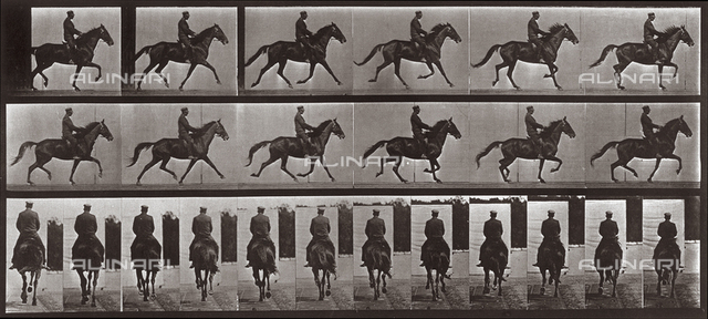 """Animal Locomotion"" (plate 601): sequence with jockey on trotting horse"