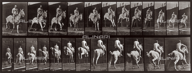 """Animal Locomotion"" (plate 646): sequence with a half naked jockey jumping on horseback"