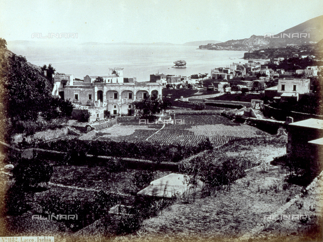 A stretch of coast of the Island of Ischia with the houses overlooking the sea. In the foreground, small gardens fenced in by low walls behind the typical houses
