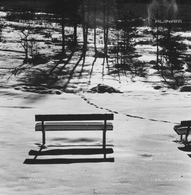 """Benches"": bench in a park covered with snow"