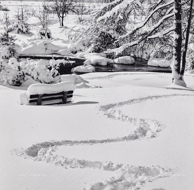 Snow in Engadine