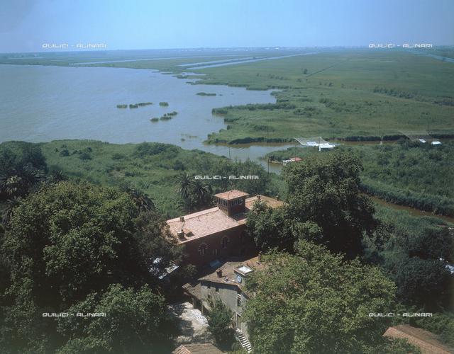 Massacciuccoli Lake