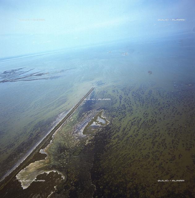 Estuaries of the Po