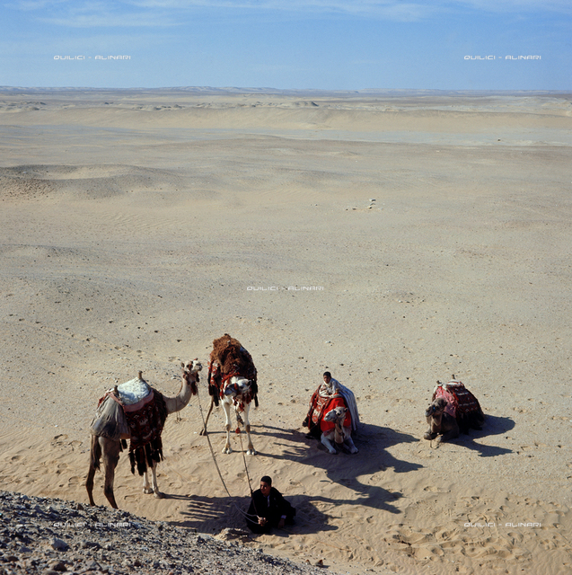 Sahara: bivouac and camel nomads in the desert camp