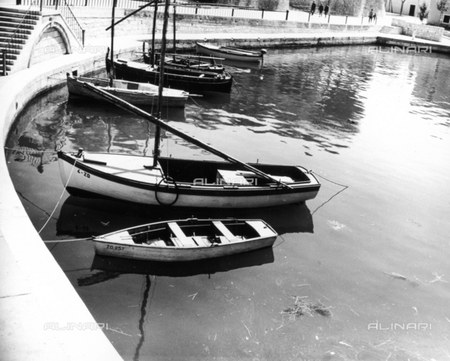 Moored boats