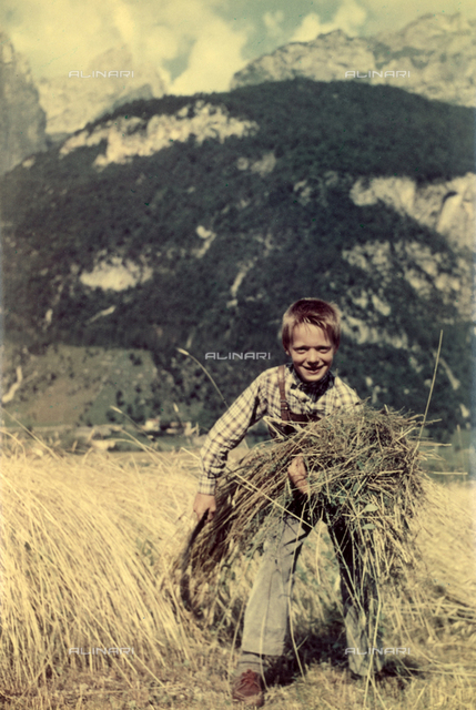 Child mowing the grass in a field