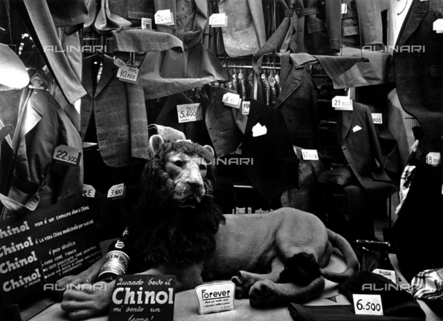 Men's clothing displayed in a shop window. At the center, between jackets and trousers, a toy lion has been placed, used as a publicity gadget for an alcoholic drink