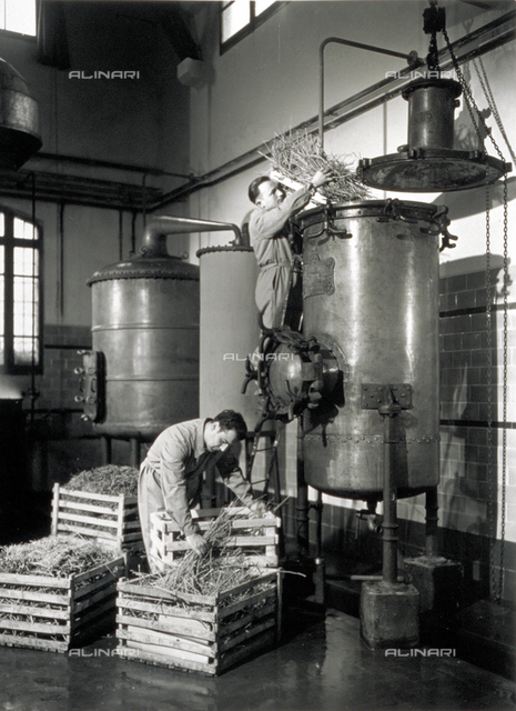 Two workers putting hay into large containers inside a distillery