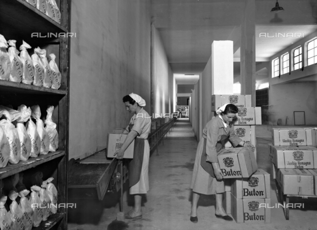 Snapshot of the distillery Buton warehouse where two women workers are placing boxes of spirits on a conveyor belt
