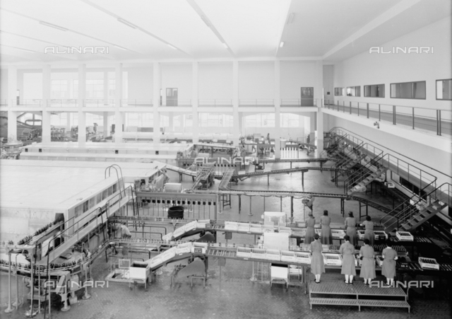 """The bottling department at the Peroni factory in Naples, formerly called """"Birrerie Meridionali di Napoli"""""""