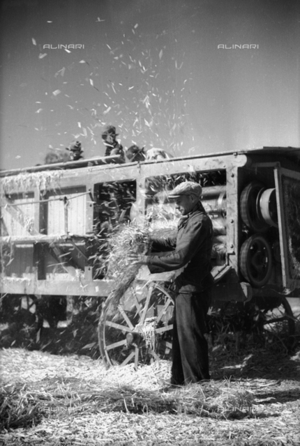 Workman in front of the shaping machine during hemp processing