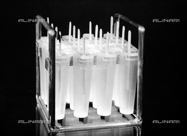 Distillery Fabbri: ice lollies, Bologna