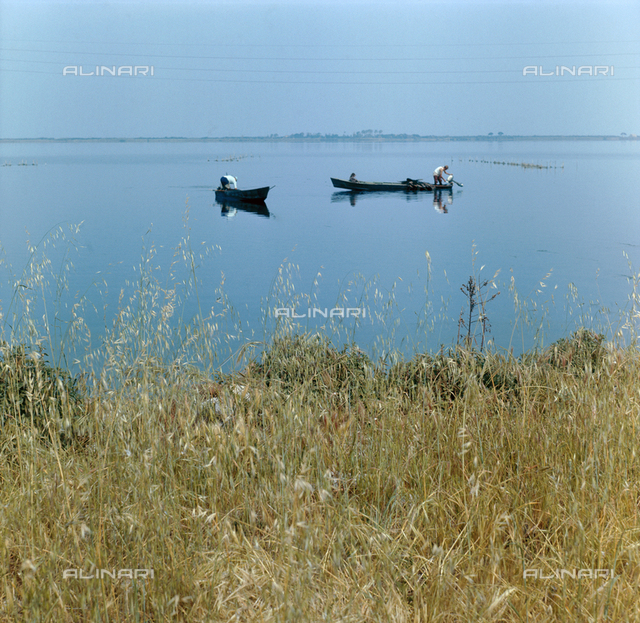 The Lagoon of Orbetello, at the center of the picture, two boats
