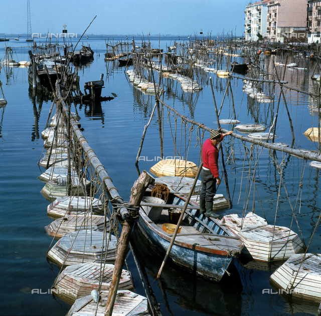 Canal of Chioggia in the Venetian lagoon